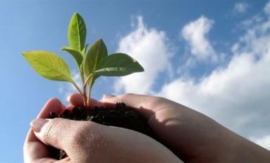 Управление экологическими рисками: существующие подходы и стандарты