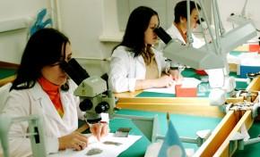 «Алроса» опубликовала cоциально - экологический отчет за 2014 год
