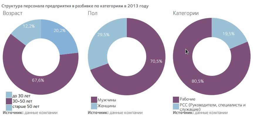 Структура персонала предприятия в разбивке по категориям в 2013 году