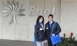 Enel Energia начинает строительство первой мини-электростанции, использующей энергию биомассы