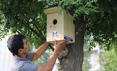Murad Buildings запускает социально-экологический проект «Ждём новосёлов»!