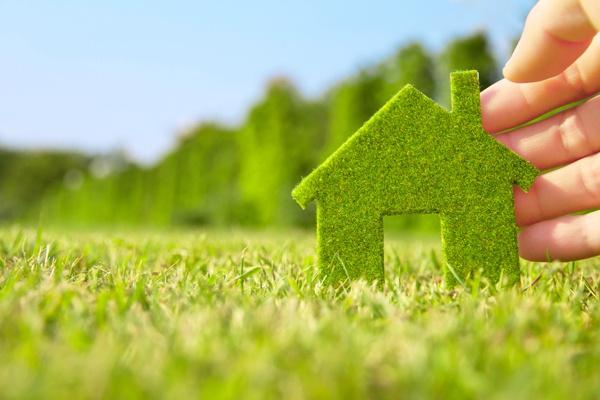 Как сделать наиболее эффективной экологическую политику компаний