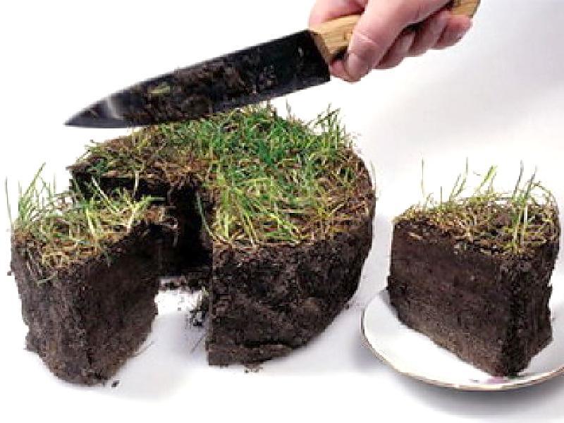 Устойчивое использование земель