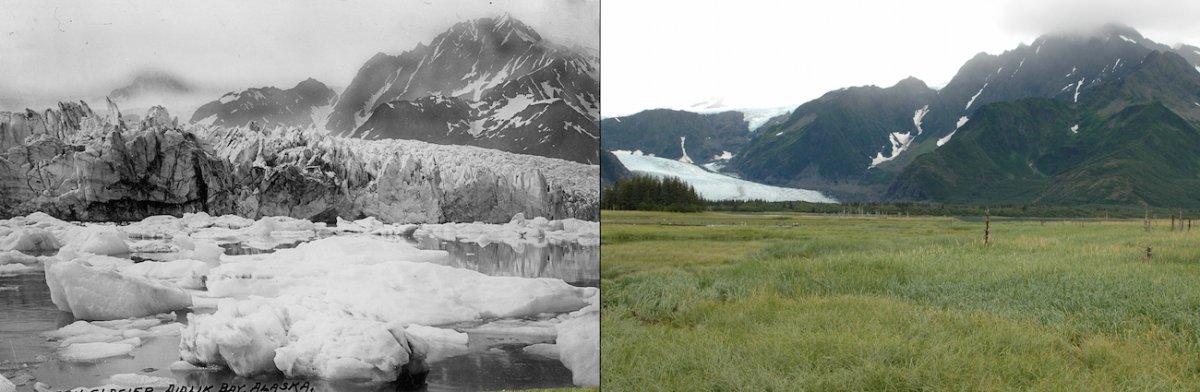 Ледник Петерсен