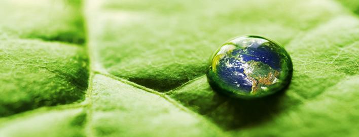 Разработка экологической политики