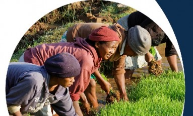 GRI берет на себя повестку дня 2030 года, касательно новой стратегии  Устойчивого развития
