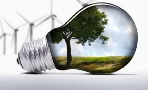 В Запорожье собираются строить биотопливную ТЭС