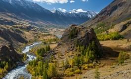 Российские компании и общественные организации создают Партнерство за сохранение климата