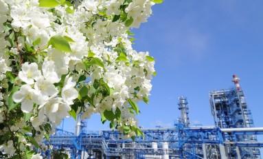 «УРАЛХИМ» направил более 300 млн руб. на экологические проекты