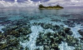 WWF: природные объекты всемирного наследия находятся под угрозой