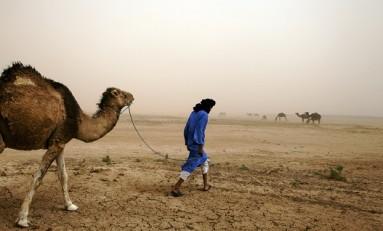 Борьба с климатическими рисками на 5-й Глобальной конференции GRI