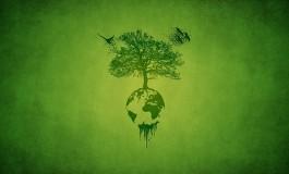 Все больше компаний используют экомаркировку для достижения конкурентного преимущества