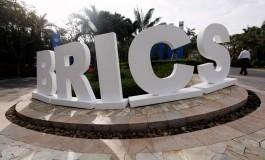 WWF: Банк БРИКС должен раскрыть свои «зеленые» политики