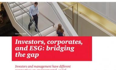 Корпоративная ESG отчетность: Что на самом деле хотят знать инвесторы?