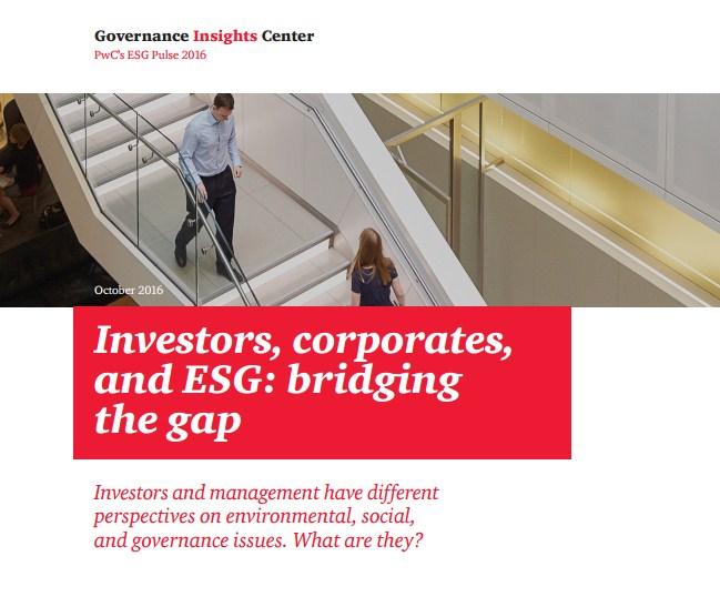 """Отчет """"Инвесторы, корпорации и ESG: заполняя брешь"""""""