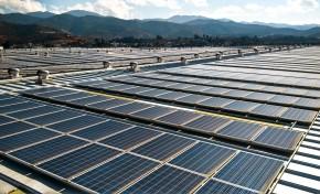 Carlsberg Group продолжает улучшать результаты в области устойчивого развития