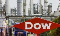 Dow признана лучшим работодателем 2017 года на международном уровне