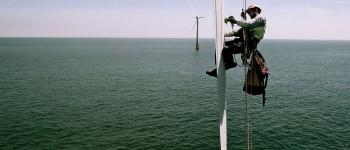 Возобновляемая энергетика создала почти 10 млн рабочих мест
