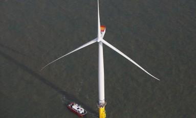 Нефтяным гигантам пора срочно инвестировать в возобновляемую энергию