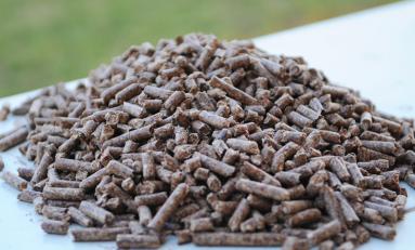 Ученые придумали эффективный способ переработки биомассы