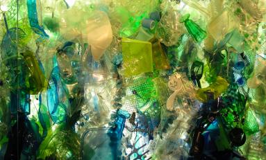 В мире образовалось 6,3 млрд тонн пластиковых отходов