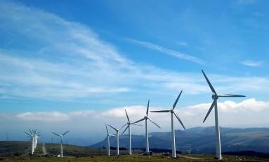 Растущий рынок зеленых облигаций поддерживает благоприятные для экологии проекты