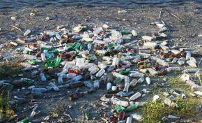 Общественный контроль экологических нарушений заработает в России