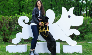 Фонд «Подарок судьбы» и АСЦ, официальный дилер ŠKODA, предложили #ВСЕМПОСОБАКЕ