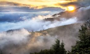 Найден новый источник парниковых газов