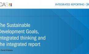 МСИО выпустил рекомендации по достижению целей устойчивого развития