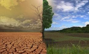 АПК & изменения климата, или Реализация парижского соглашения на полях AgroGeneration