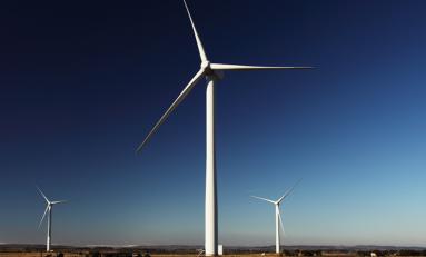 Электричество из возобновляемых источников оказалось выгоднее традиционного