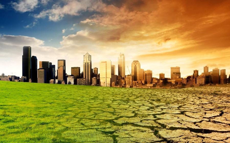 Шаги к устойчивости: что сделать для достижения глобальных целей