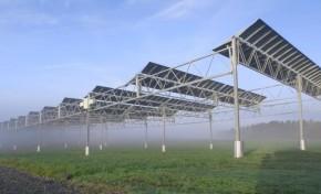 С агрофотовольтаикой земля будет давать и урожай, и энергию (видео)