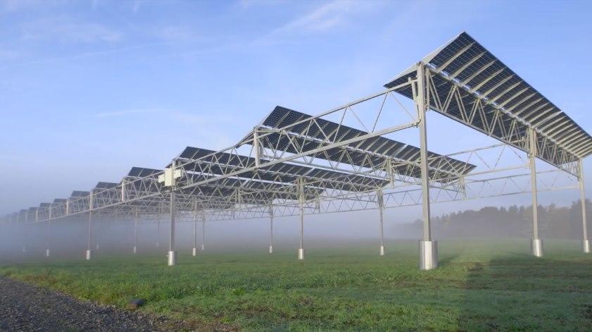 С агрофотовольтаикой земля будет давать и урожай, и энергию