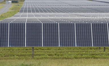 Через два года возобновляемая энергия станет дешевле традиционной