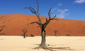 Глобальное потепление поразит засухой четверть планеты