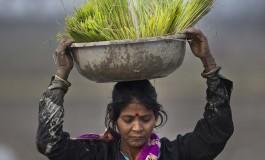 Доклад ООН: женщины по всему миру беднее и голоднее мужчин