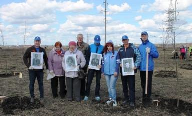 «Ростелеком» в Липецке поддержал проект «Аллея памяти»