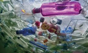 Hyatt против одноразового пластика