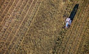 Применение в стратосфере технологий для замедления изменения климата снизит урожайность