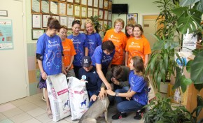 Волонтеры «Ростелекома» помогли бездомным животным