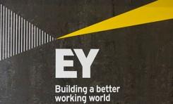 Исследование EY: экологическая, социальная и управленческая (ESG) информация, а также данные нефинансовой отчетности имеют большое влияние на принятие решений инвесторами