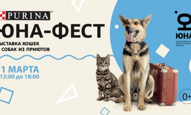 Выставка собак и кошек из приютов «Юна-Фест»: сделайте весну теплее!