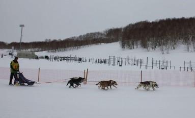 «Ростелеком» поддержит торжественное открытие Берингии на Камчатке