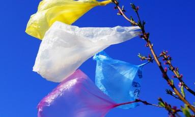 В России выпустили руководство по борьбе с навязыванием одноразовой упаковки