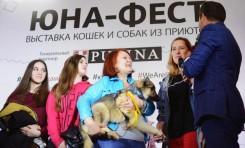 Теперь домашние: выставка-пристройство животных «Юна-Фест» подводит итоги