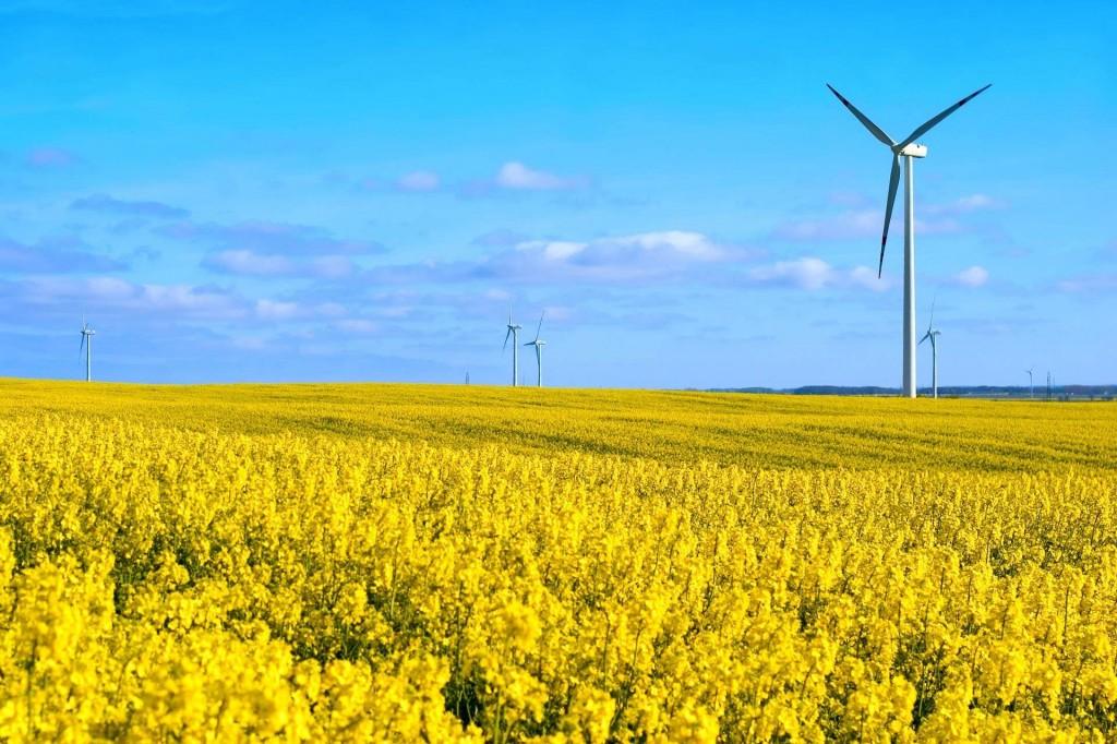 Компания Georg Utz получила награду от EcoVadis за ответственное и устойчивое развитие