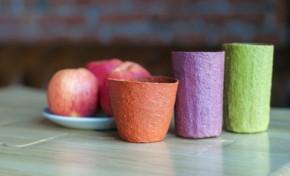 Самарские ученые создали съедобную посуду из яблок