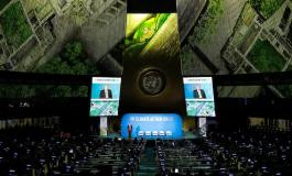 Саммит малых климатических дел